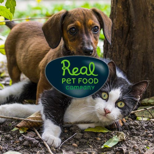 Real Pet Food - Digital Commerce Partner
