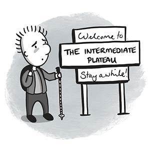The intermediate plateau