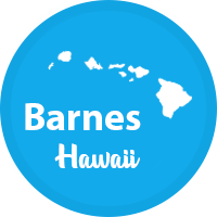 Barnes Hawaii Real Estate group logo