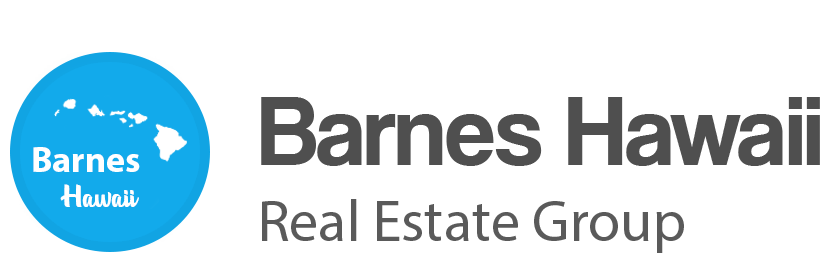 Barnes Hawaii Group Logo