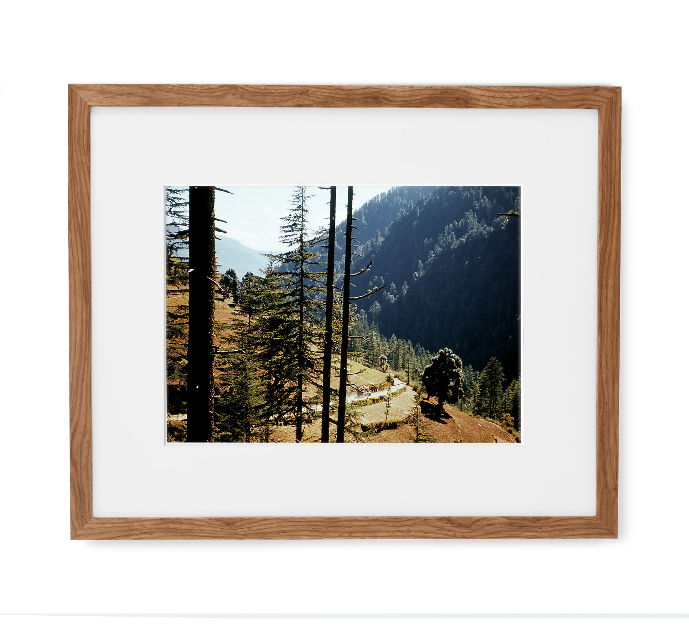 Indian Forest Drive Framed Light Wood