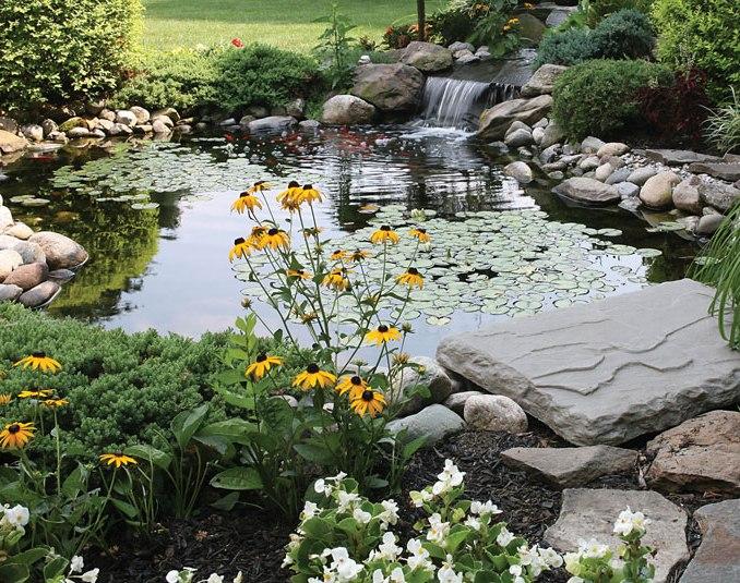 Natural Looking Landscape Pond