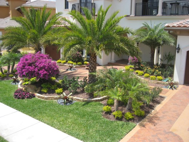 Tropical Landscaping in Helotes Tx