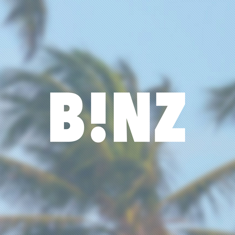 Yobologo Rennes création de logo et identité visuelle pour l'agence Binz à côté de Saint Malo