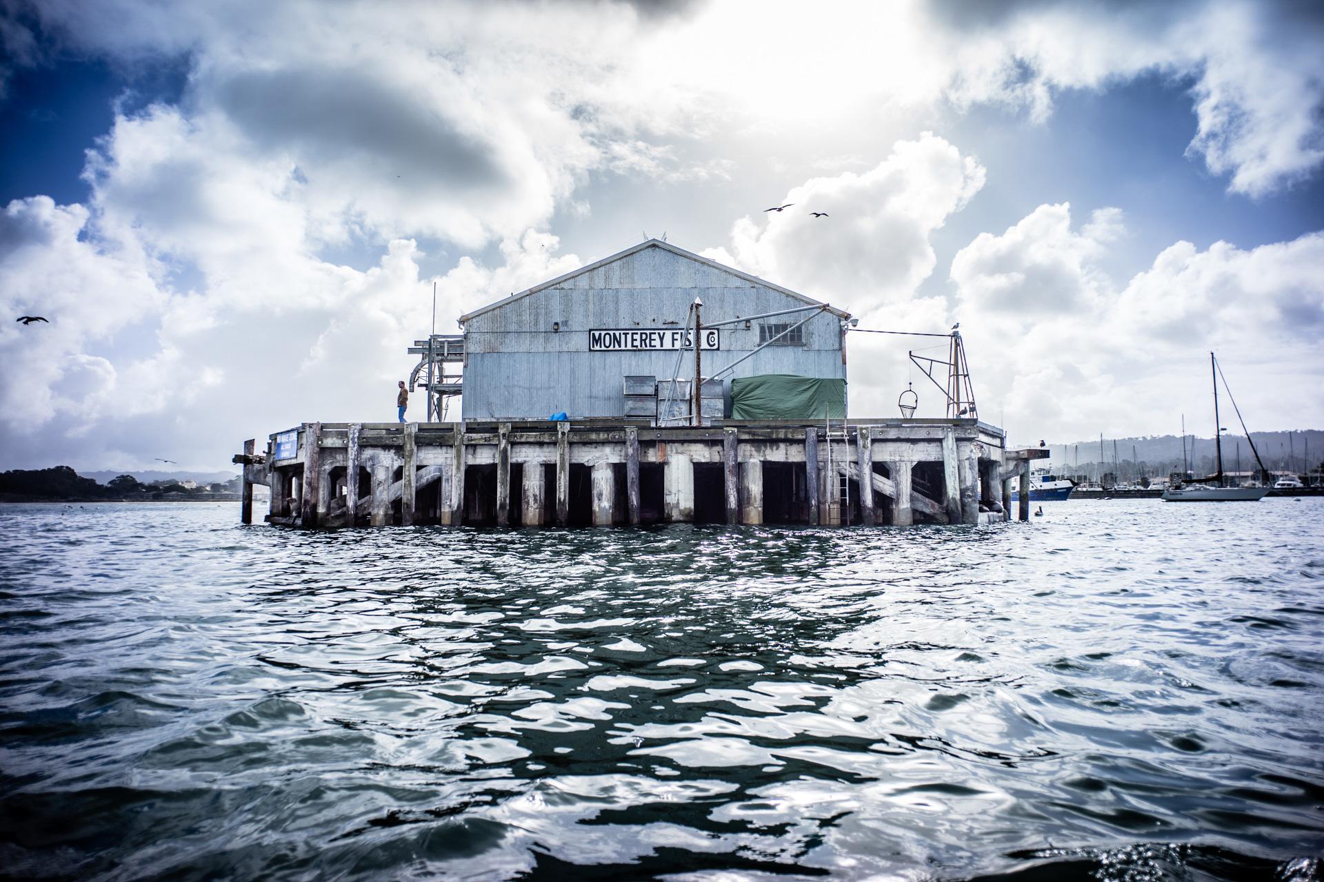 Monterey California Marina Water