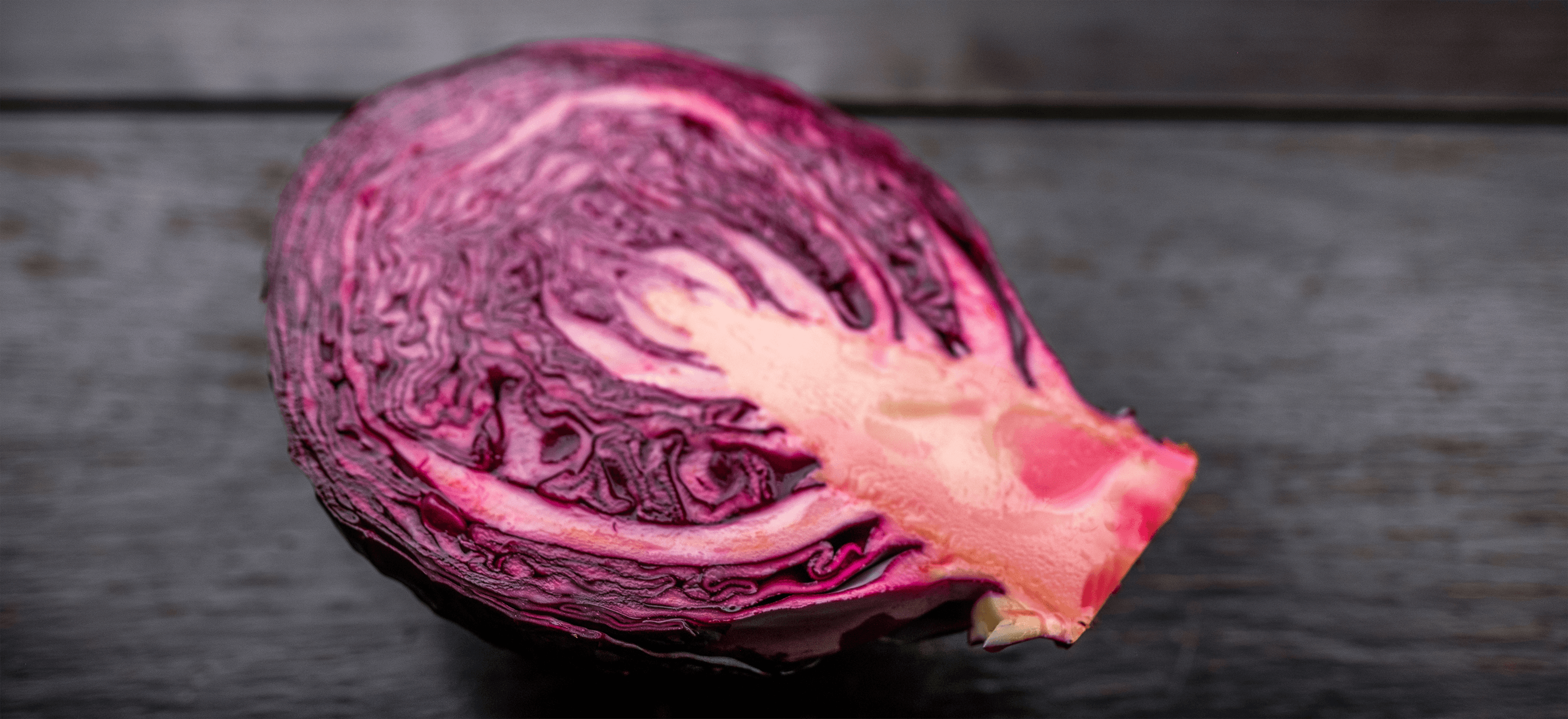 batard banner slideshow image purple cabbage