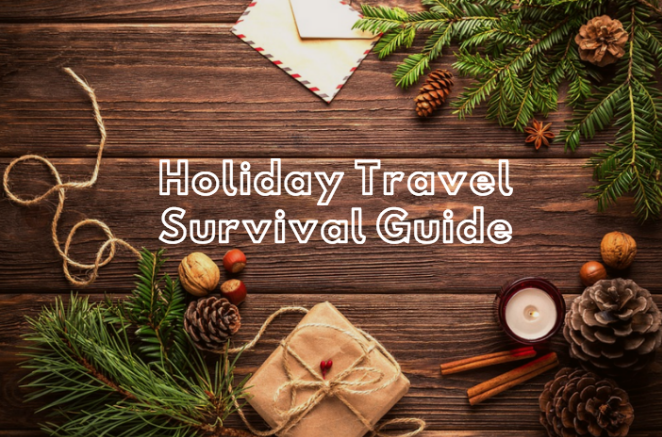 travelers survival guide for the holidays