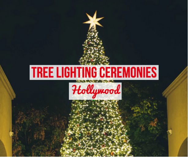 hollywood tree lighting