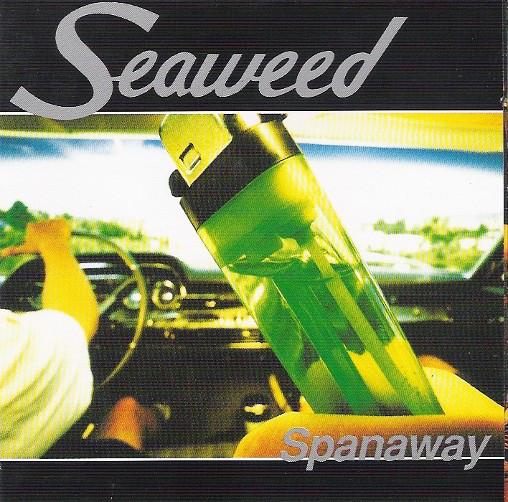 487 Spanaway by Seaweed