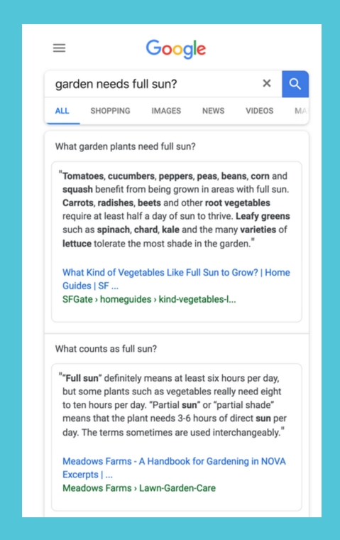 Multi-faceted featured snippet example