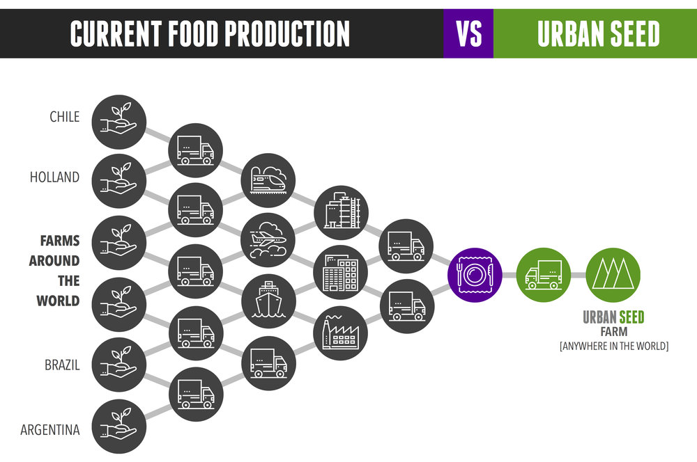 Chart Showing The Reinvented Food Supply Chain