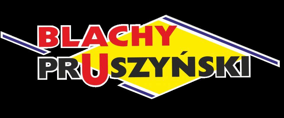 Umycie dachu hali dla firmy Blachy Pruszyński.