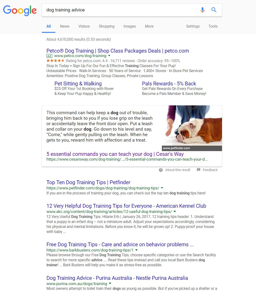 google first page serp example