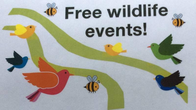 Free wildlife events.