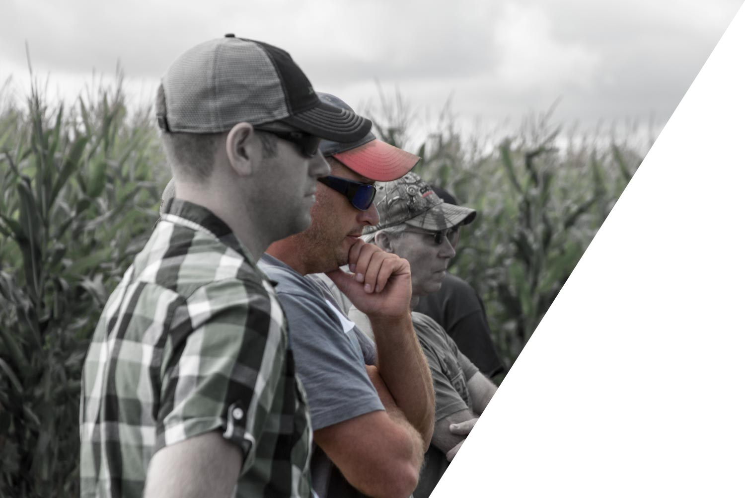 farmers learning best agronomy practices