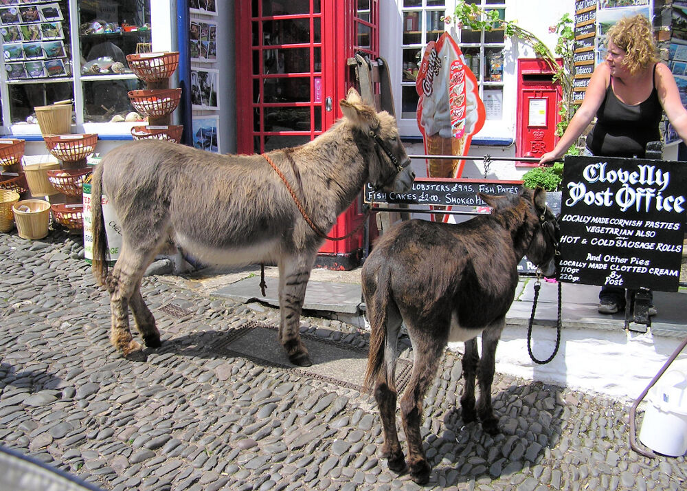 Clovelly Post office and donkeys