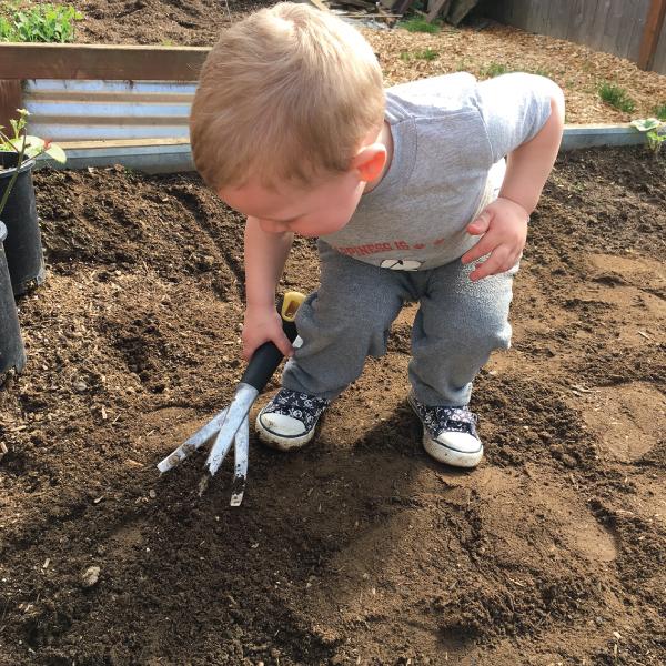 Toddler gardening   Childcare Salem Oregon