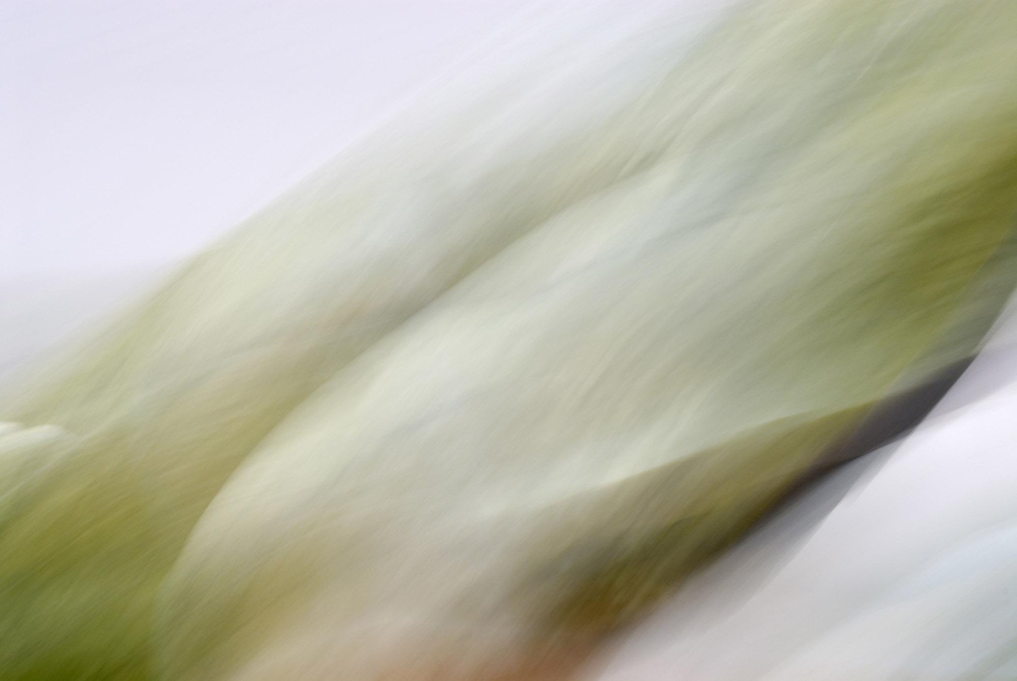 Foto van vage groene vormen schuin