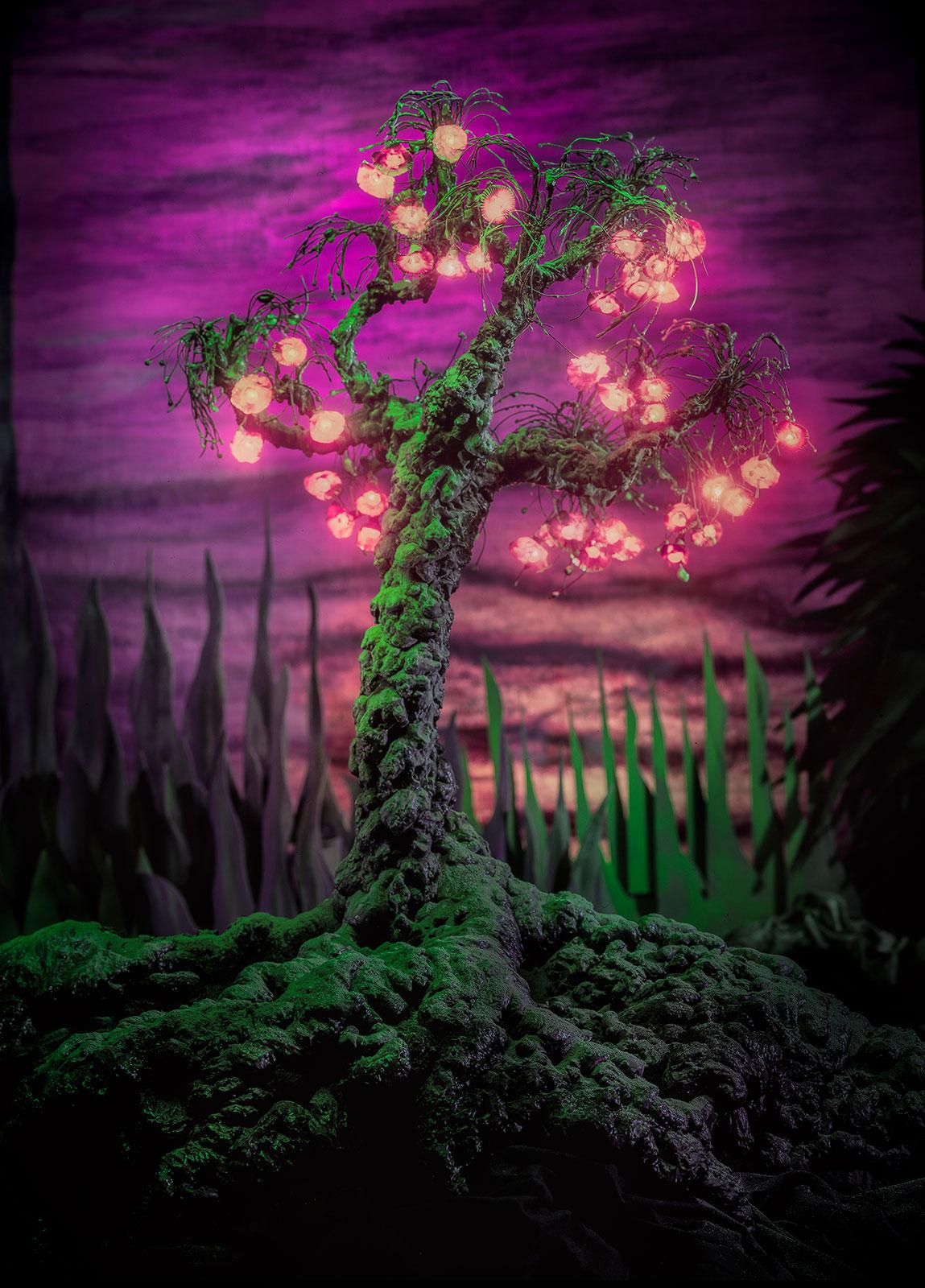 Droomboom, geënsceneerde fotografie van Jan van der Horn