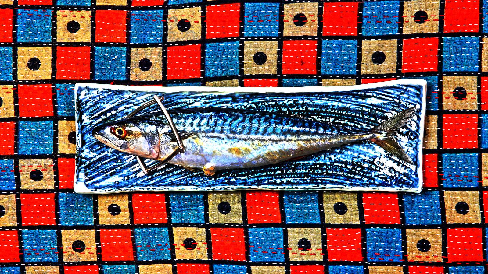 Foto van vis op gekleurd bord met sieraad