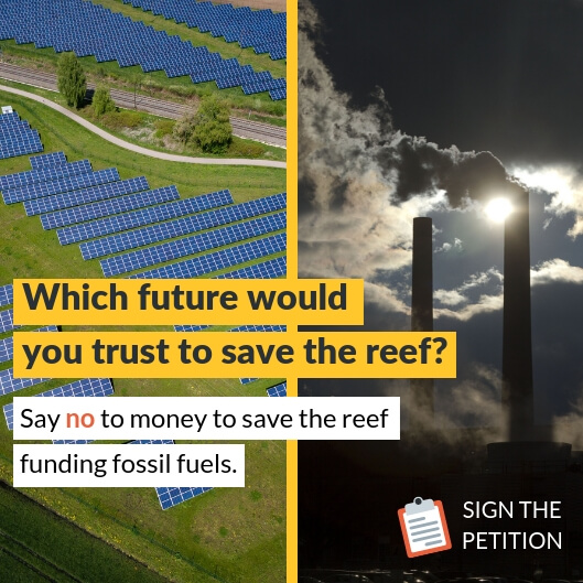 Renewables or Fossil Fuels to save the reef