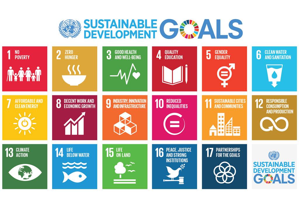 UN Sustainable Development Goals. Taken from http://www.un.org/News/dh/photos/large/2015/September/09-09-E-SDG-Poster.jpg