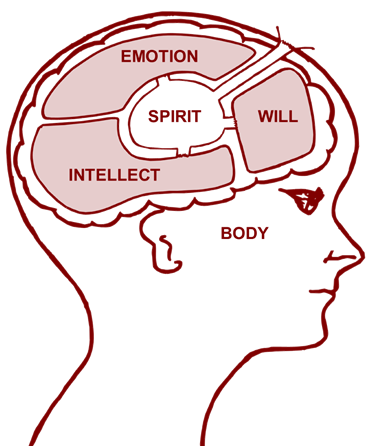 Will, Intellect and Emotion
