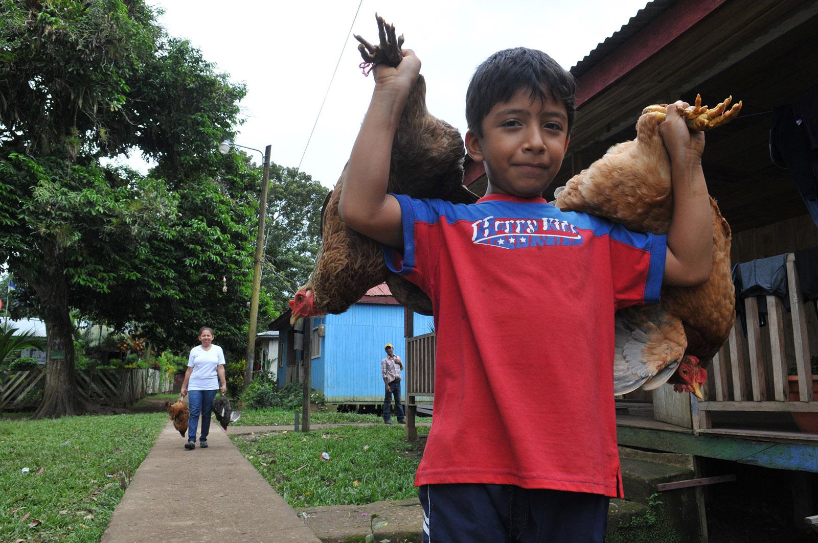 foto van een jongetje met twee kippen over zijn schouders hangend en op de achtergrond een vrouw met twee kippen in haar handen en een man die om het hoekje kijkt