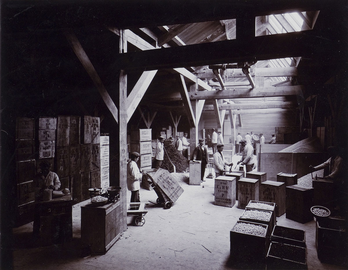 sepia foto van interieur notenpakhuis in Amsterdam rond 1900