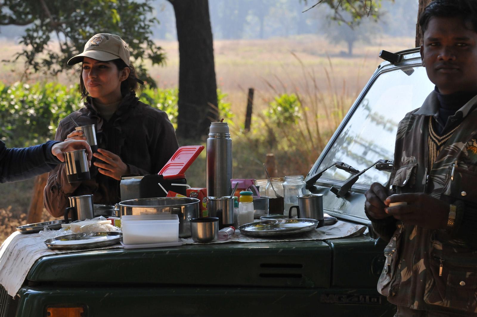 mensen bij auto op safari aan het picknicken op motorkap
