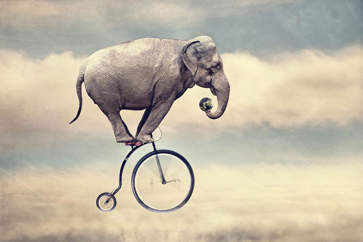 surrealistische foto van een olifant op een circusfiets in de wolken