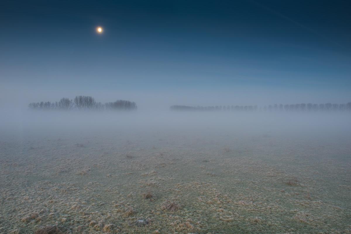 foto van vaag landschap met mist en boompjes met maan in blauwe lucht