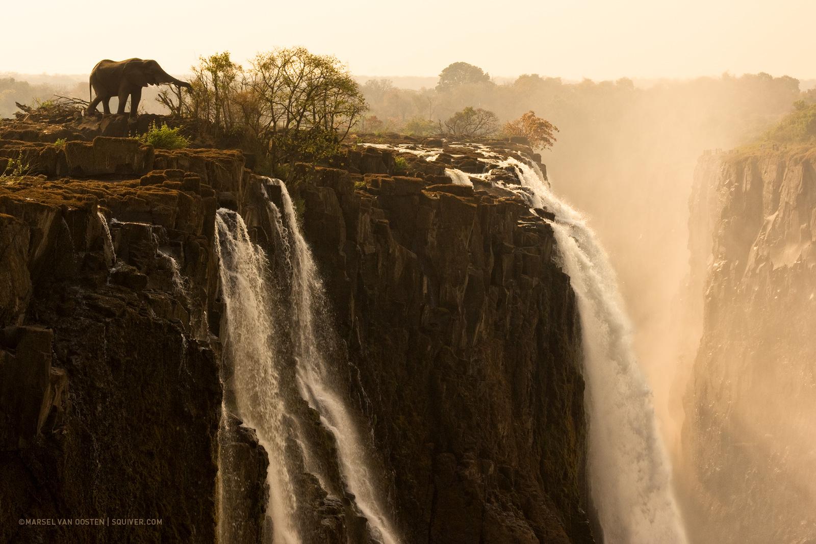 foto van Marsel van Oosten van olifant bij waterval