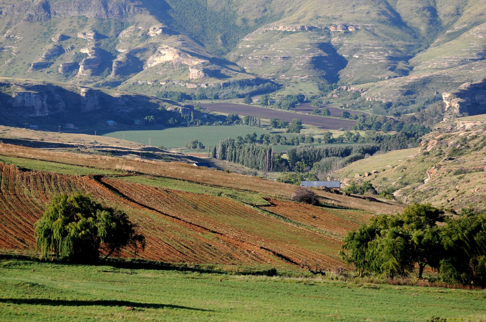 foto: Tom van der Leij van landschap Zuid-Afrika