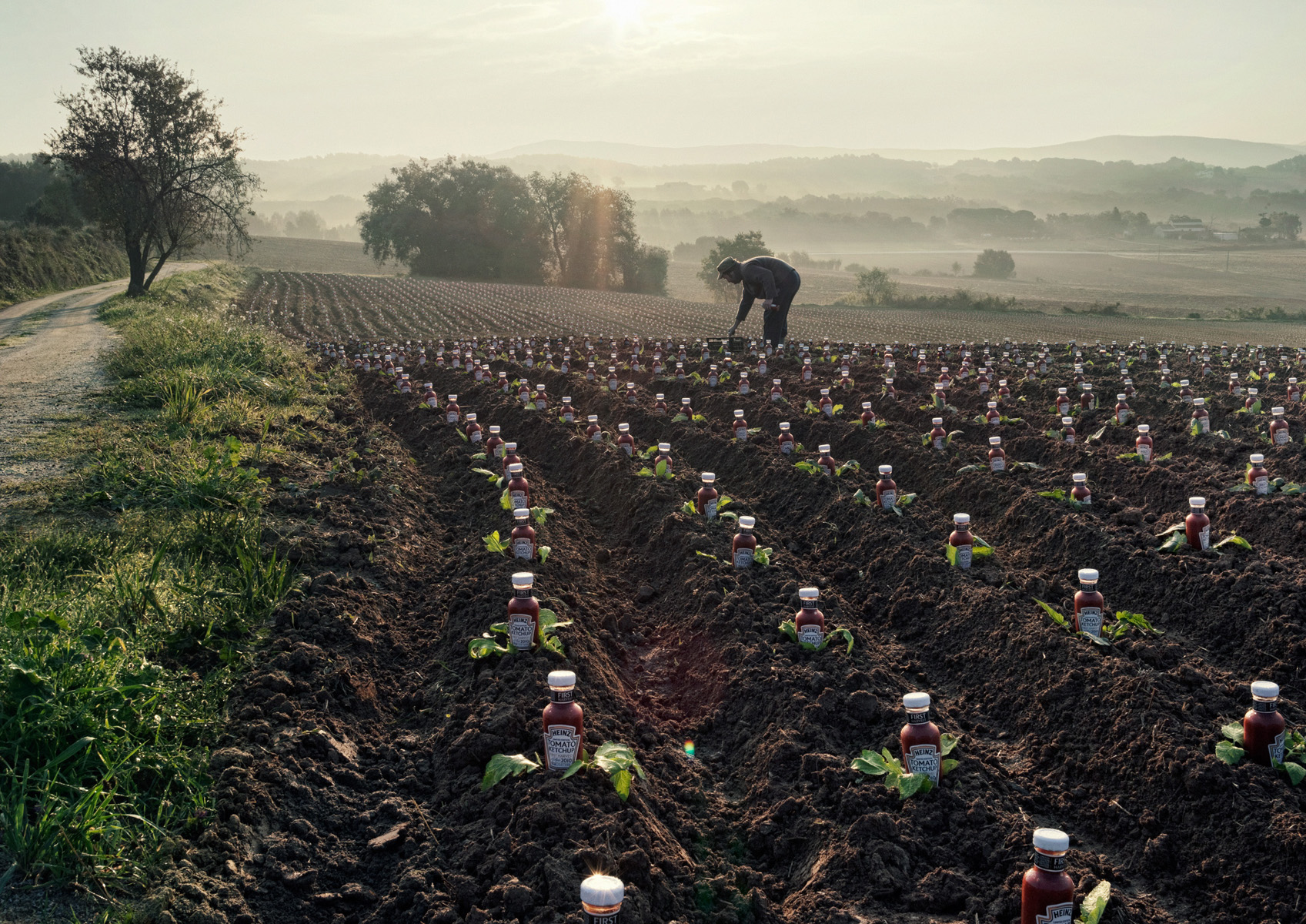 reclamefoto van Maurice Heesen voor Heinz van een man op een land in zuid europa en allemaal ketchupflessen tussen de slakroppen