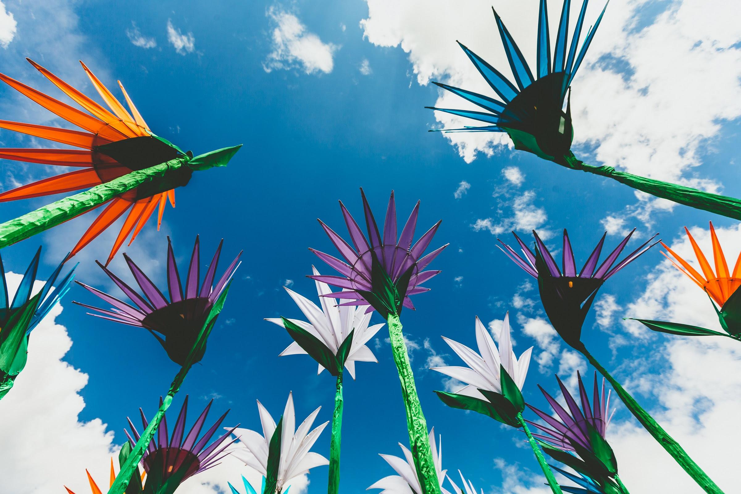 foto van papieren bloemen van onderaf en lucht met blauw en witte wolken