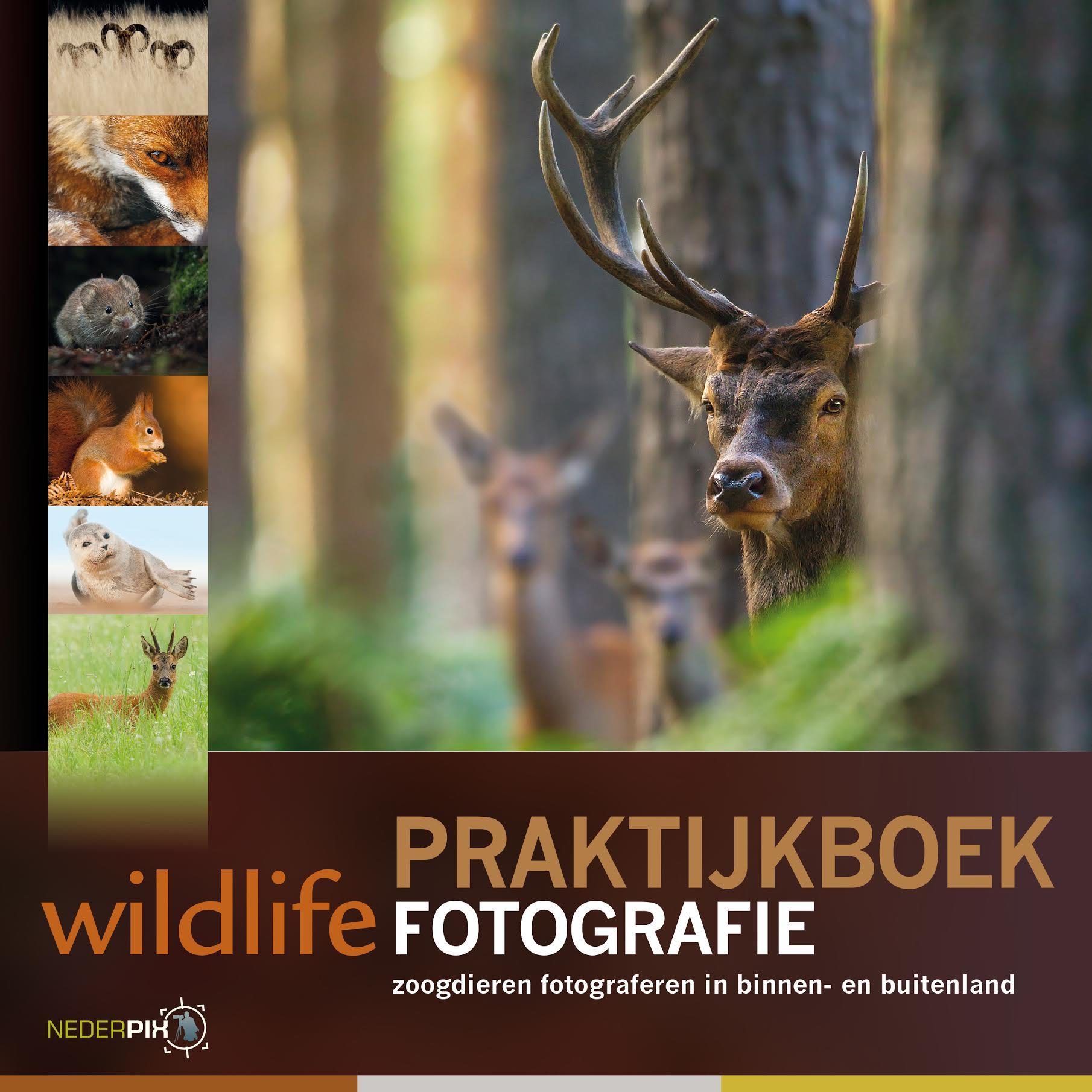 coverfoto van Praktijkboek Wildlifefotografie