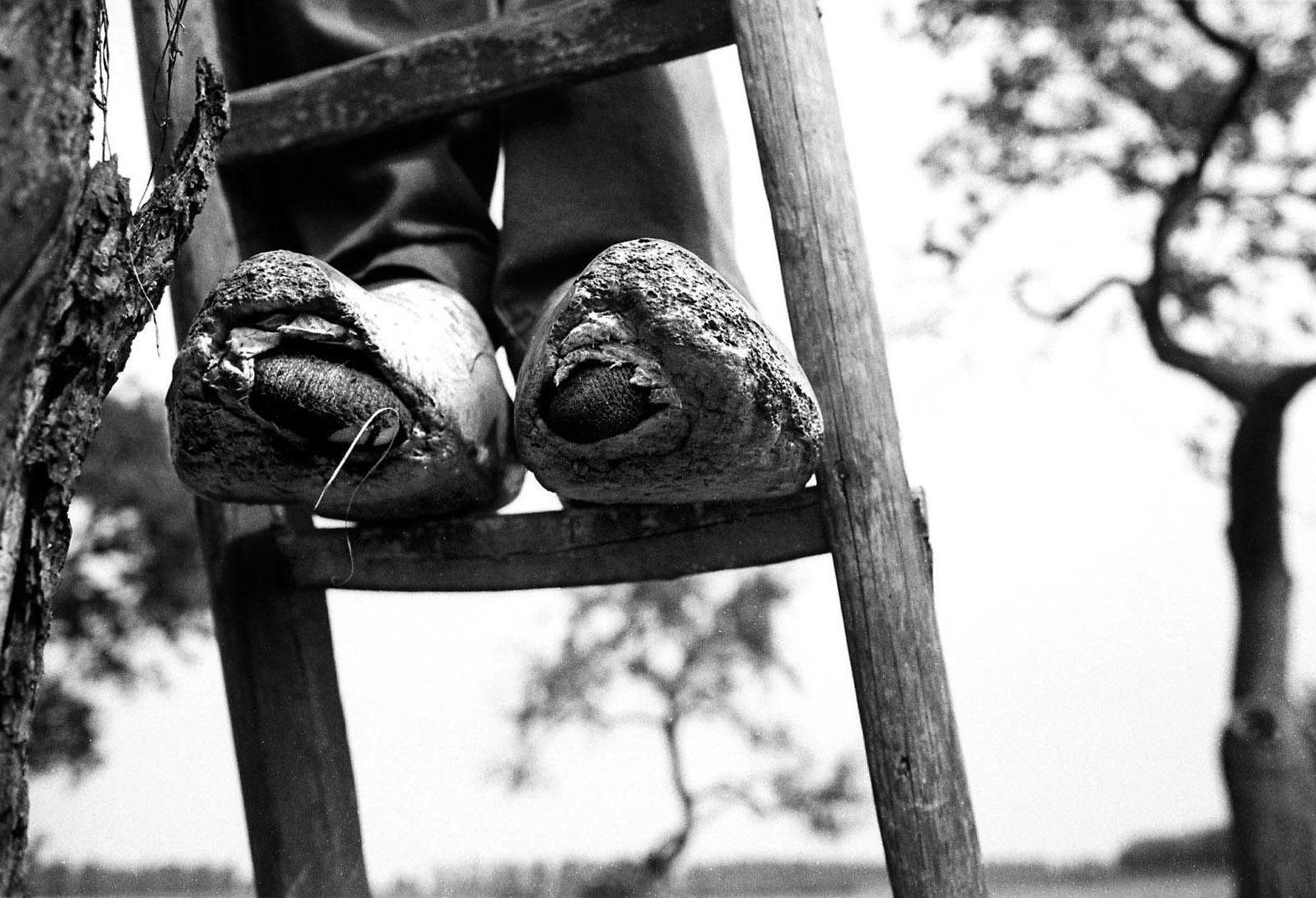 foto: Marcel van den Bergh - kapotte klompen op ladder
