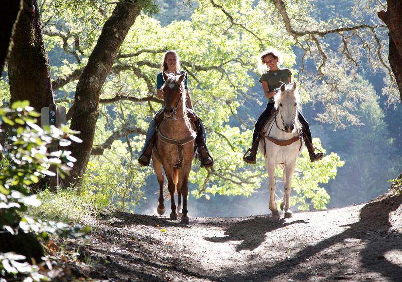 twee vrouwen op paard in zomers bos