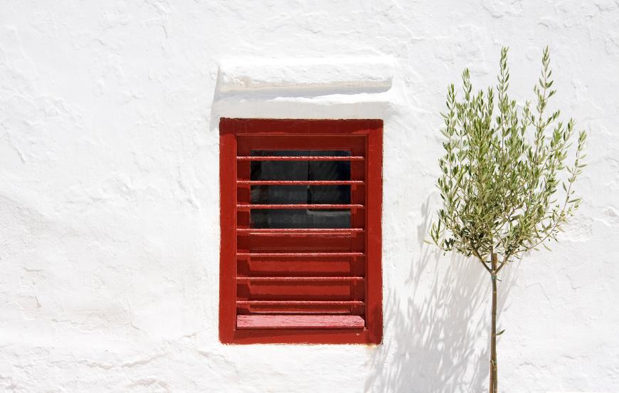 witte muur met rood luik/raam en groen boompje
