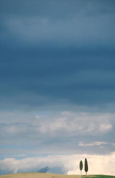 Toscaans landschap met pijnbomen op een extreem lage horizonlijn.