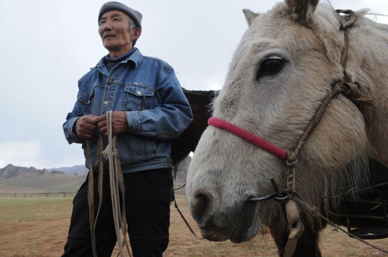 © Tom van der Leij | Mongolië, Namsrai, de paardengids