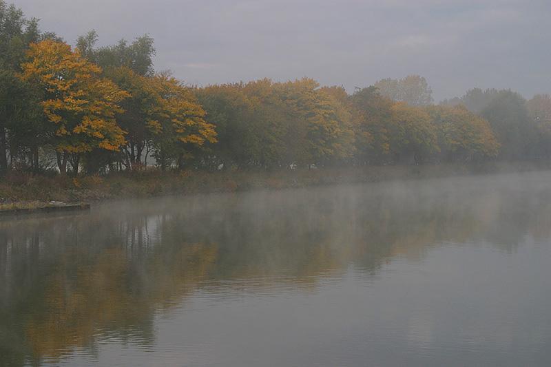 foto: Aaldrik Pot, bomen in mist aan rivier
