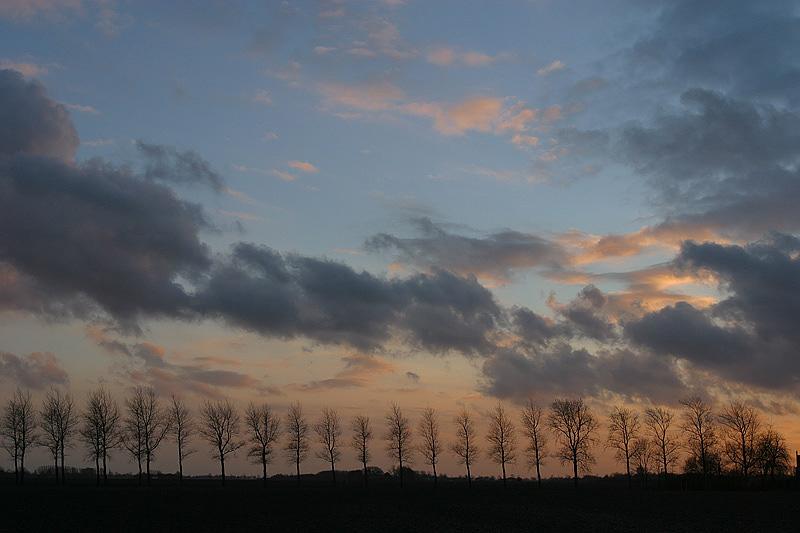 foto: Aaldrik Pot, bomen in silhouet tegen wolkenlucht