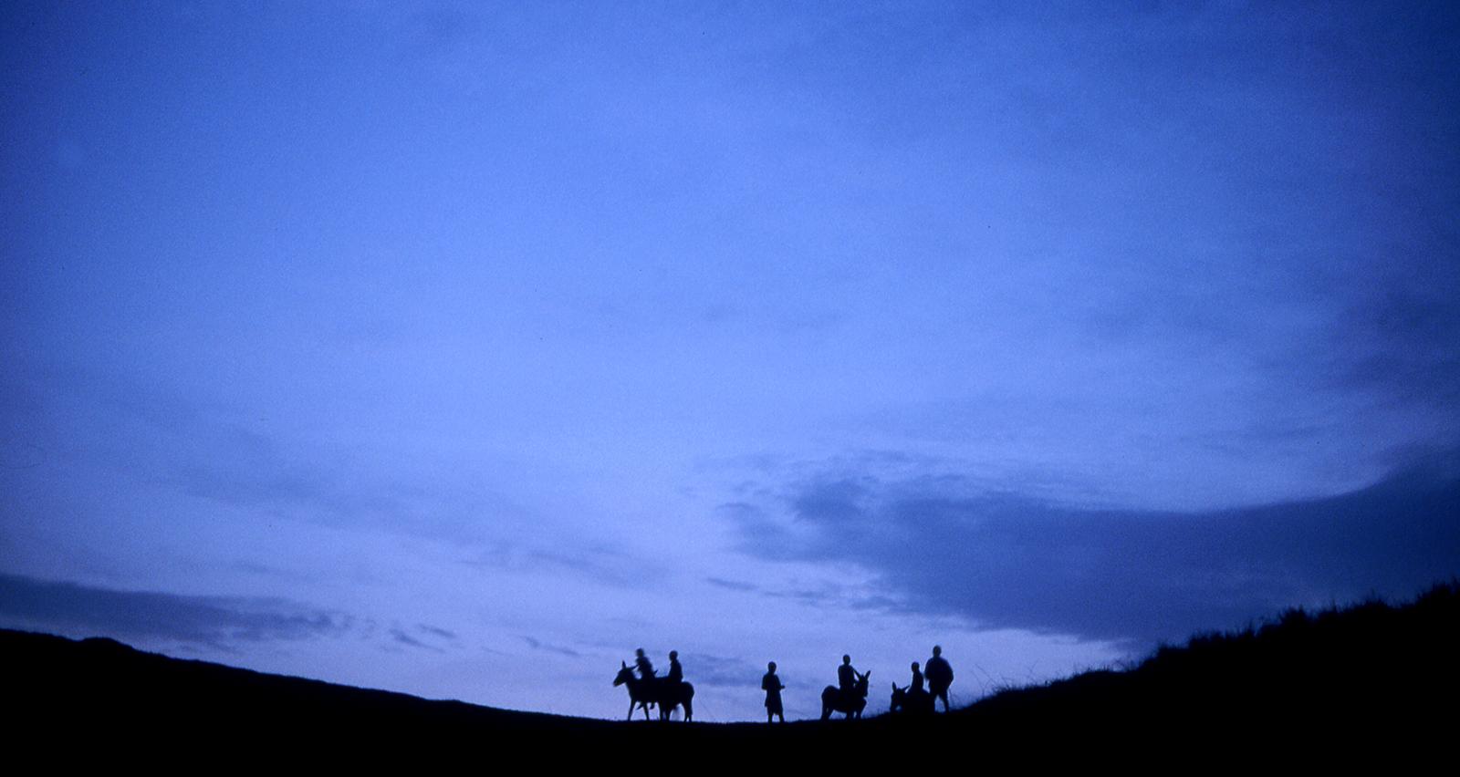 Mannen op paarden in verte op heuvel als silhouet met blauwe avondlucht