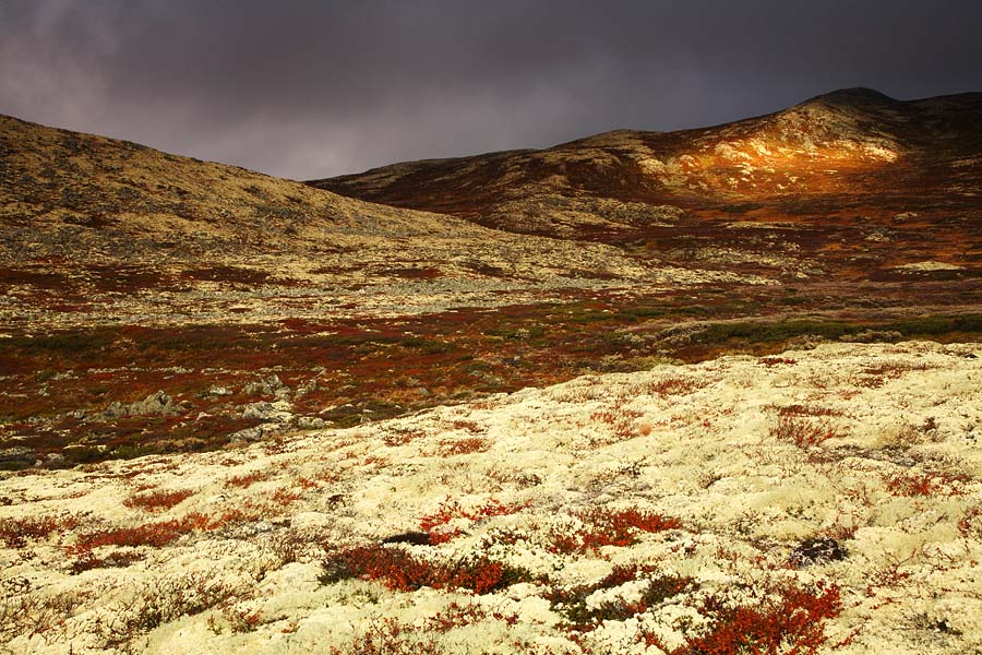 foto: Hillebrand Breuker | Rondane