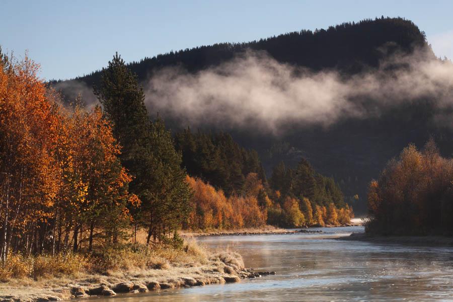 foto: Hillebrand Breuker | Herfstkleuren in Noorwegen,