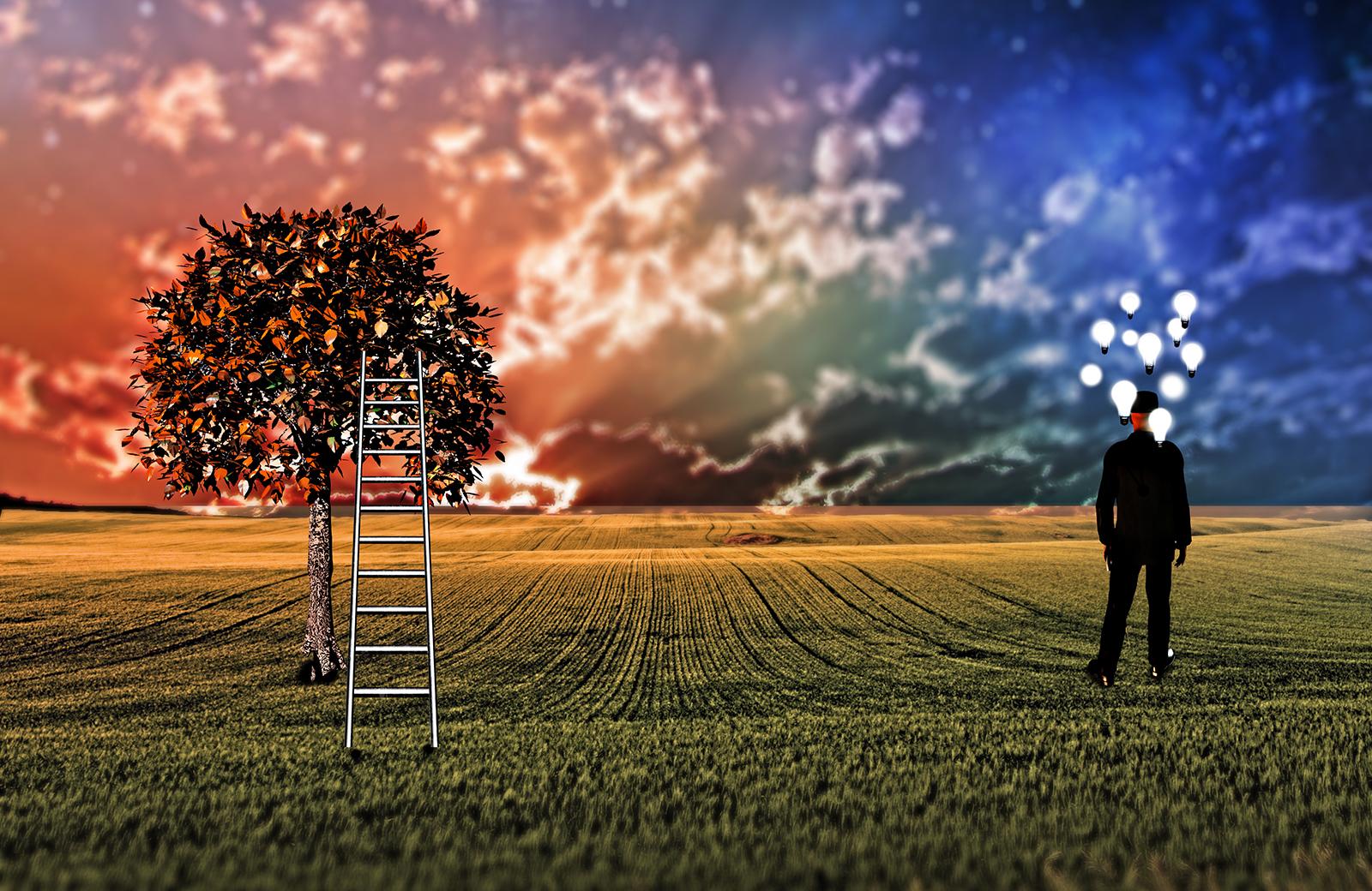 Foto: © rolffimages / Adobe Stock, man in veld met trap tegen boom