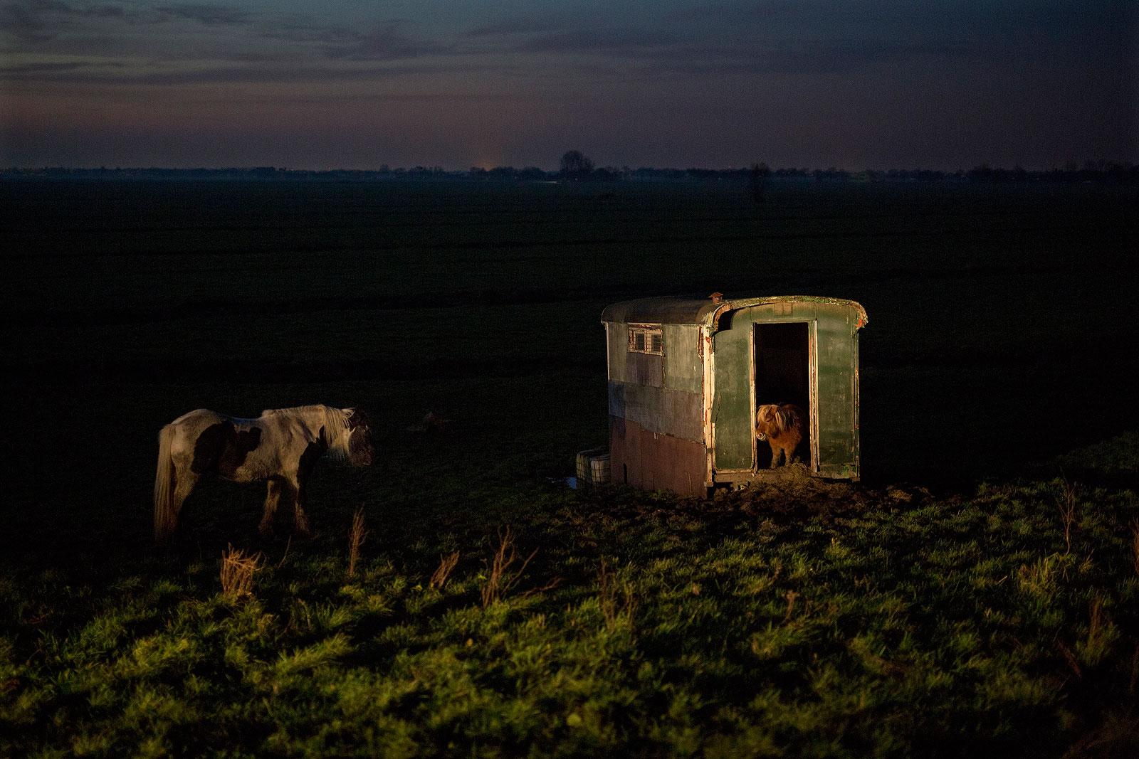 foto: © Bert Verhoeff - uit de serie Wonderpolder