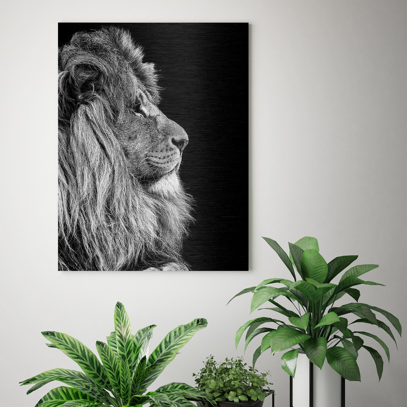 foto van leeuw aan de muur met kamerplanten erbij